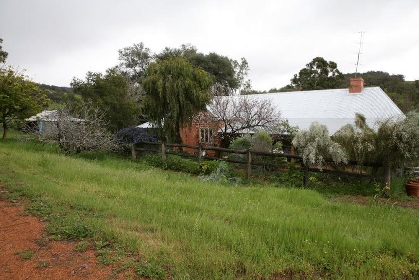 Kitchen Herb Garden at Enderslea Farm